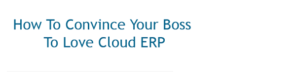 How to convice your boss to love Cloud ERP